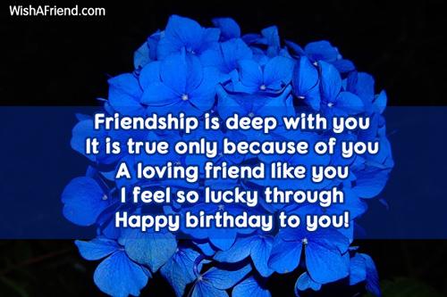 12167-friends-birthday-sayings