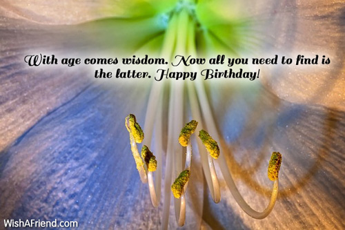 1336-humorous-birthday-wishes