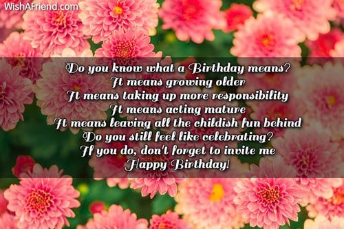 1338-humorous-birthday-wishes