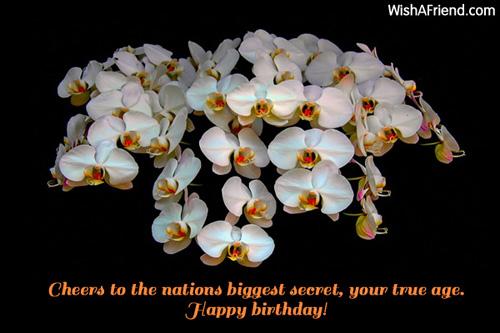 295-funny-birthday-wishes